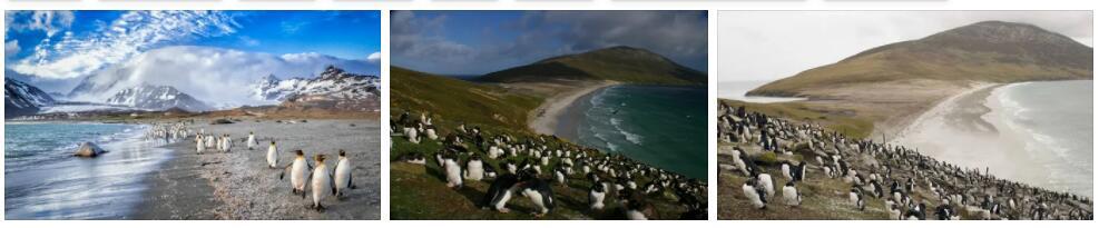 Falkland Islands Overview